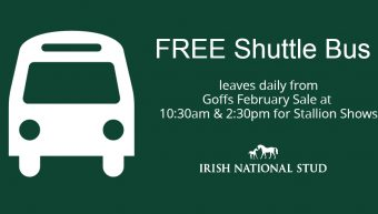 Irish National Stud Bus Service
