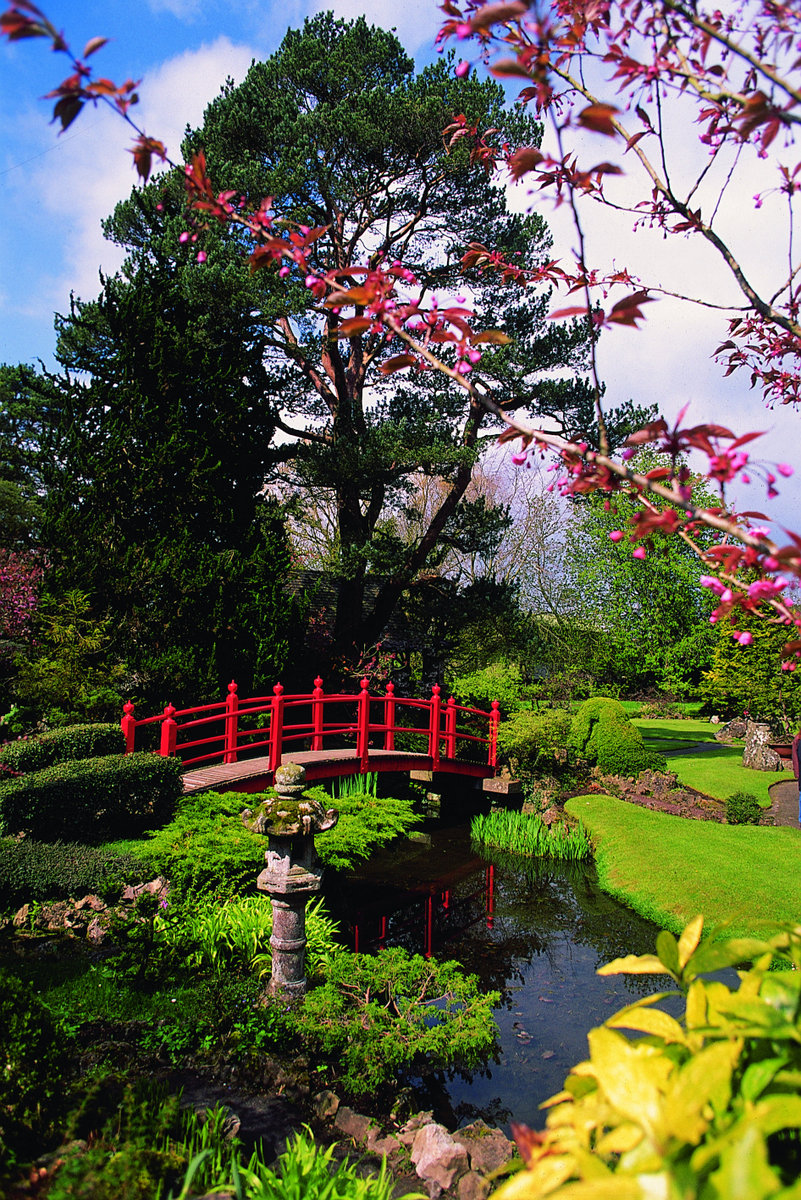 irish national stud japanese gardens - Japanese Garden
