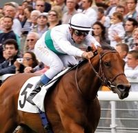 Cloud Lights Up Longchamp