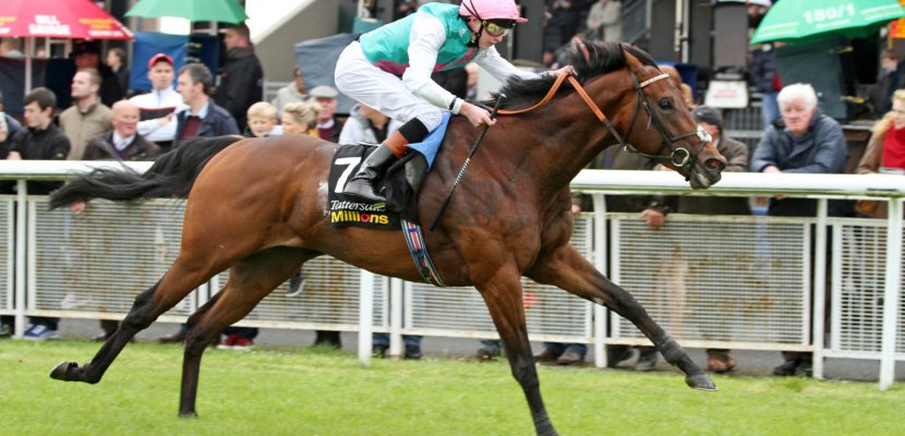 Invincible Spirit Colt Crowned
