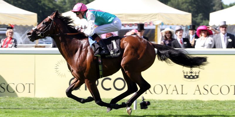 King Of Royal Ascot