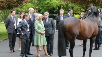 The Duchess of Cornwall Visits the Stud