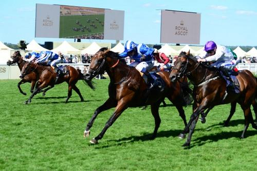 Eqtidaar, owned by Sheikh Hamdan wins Group 1 Commonwealth Cup at Royal Ascot