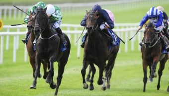 Irish National Stud Bred Indigo Balance wins Curragh Stakes