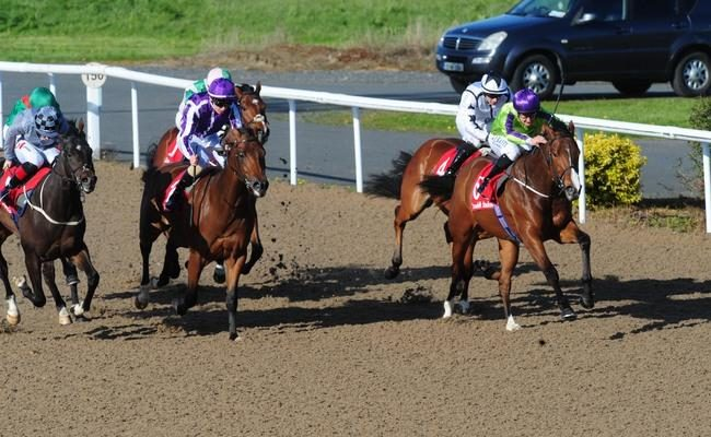 It's All About The Girls as Irish National Stud Bred Chica Amigas wins first time out!