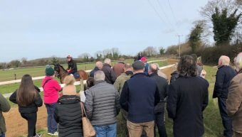 I.N.S Racing visit to Joe Murphy's Yard & Coolmore Stud