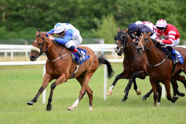 Soaring Monarch another winner for Free Eagle
