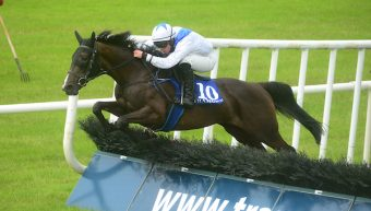 Moll Dote Maiden Hurdle Winner for Elusive Pimpernel