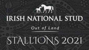 Irish National Stud Stallions feature in Racing Post Breeding On A Budget