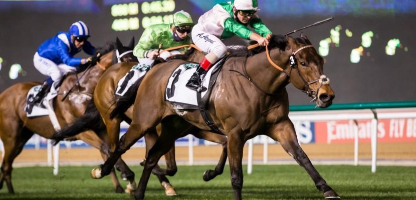 Equilateral Wins the Group 2 Sprint in Meydan for Equiano