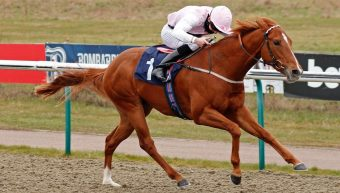 Apollo One makes it 2 Stakes wins in 2 weeks for EQUIANO