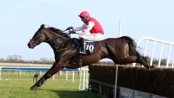 Jungle Junction provides Elusive Pimpernel with another impressive winner
