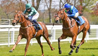 First runner, first Winner for Decorated Knight!